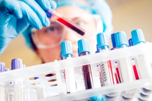 analisi veterinario caserta progesterone san nicola la strada